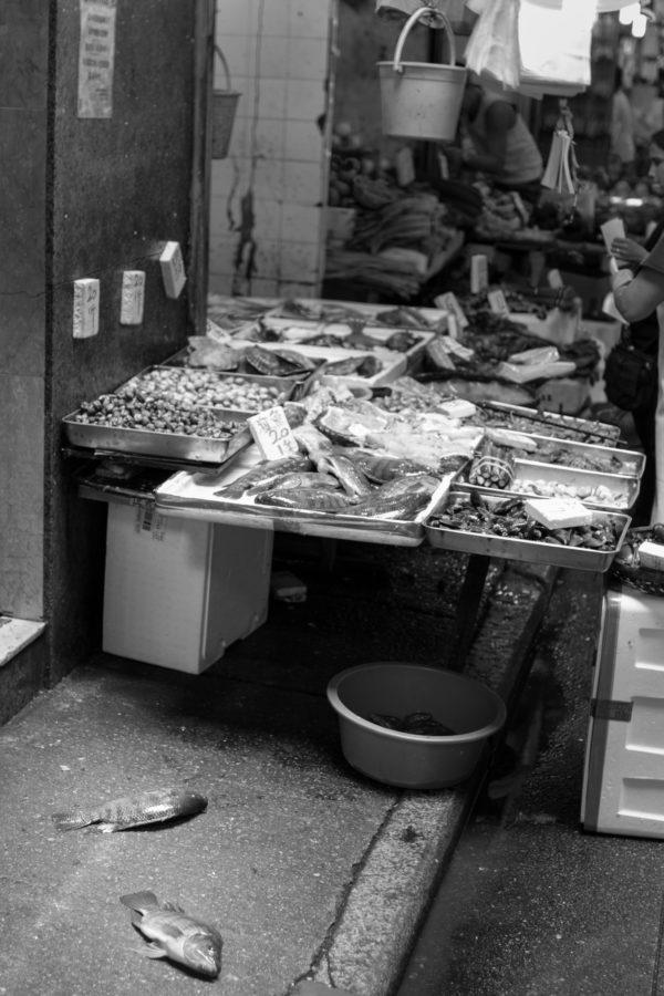Fish in Hong Kong